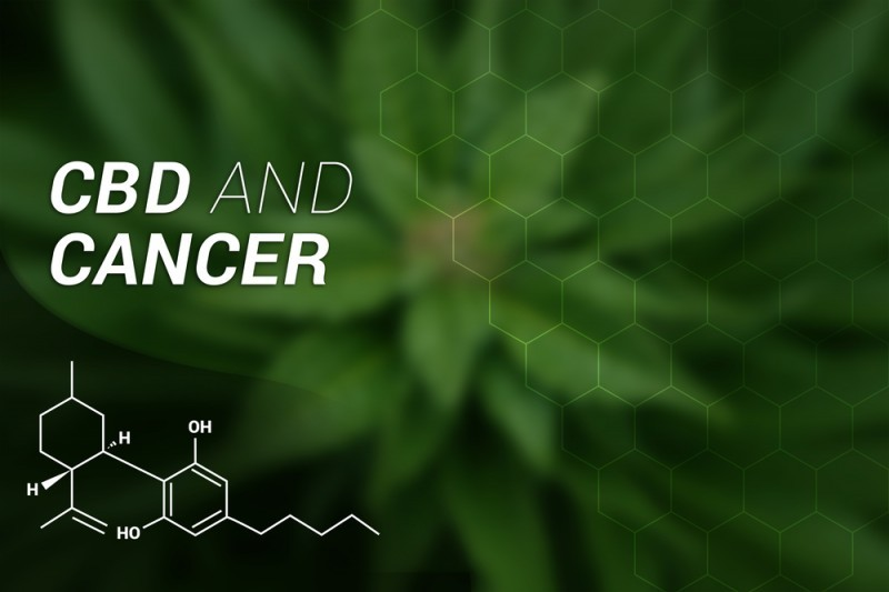 CBD's Impact on Cancer Merits Further Research - Pure Lab Global